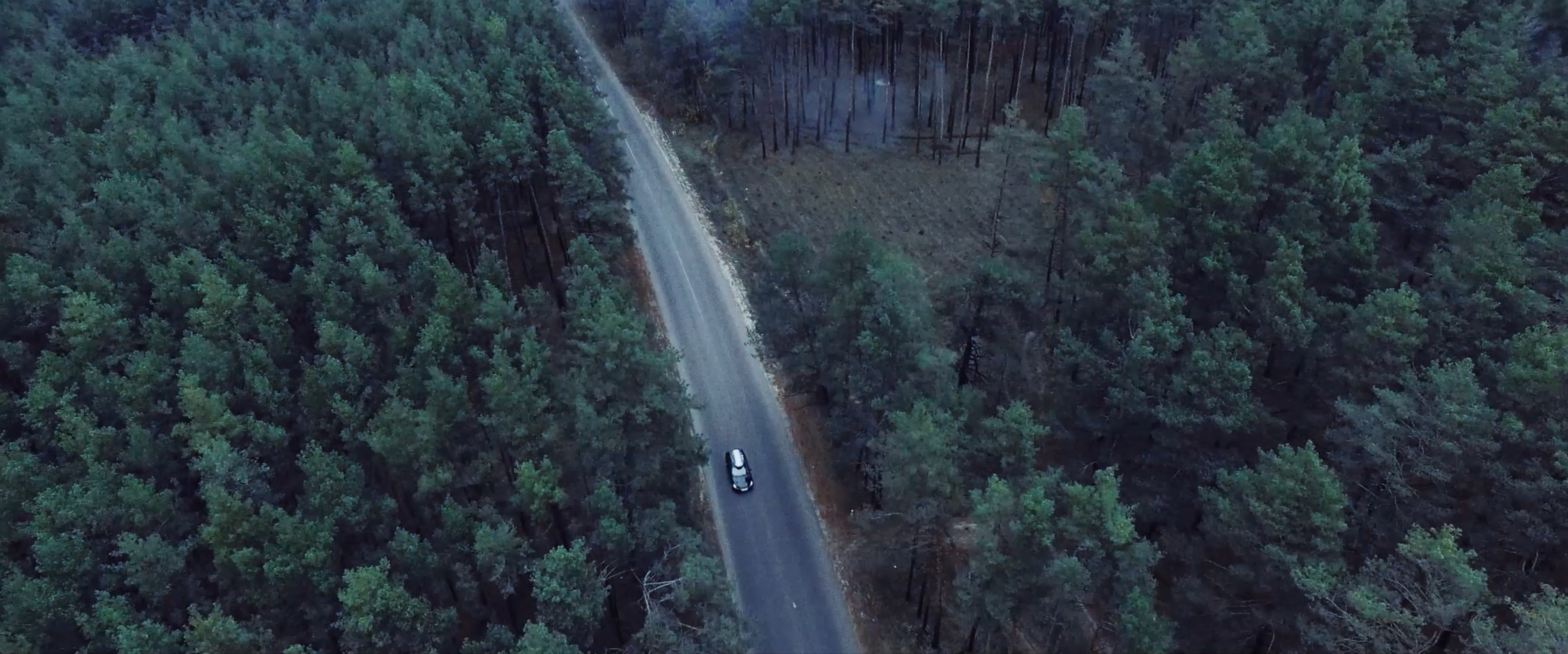 BRIDGESTONE - Drive Guard