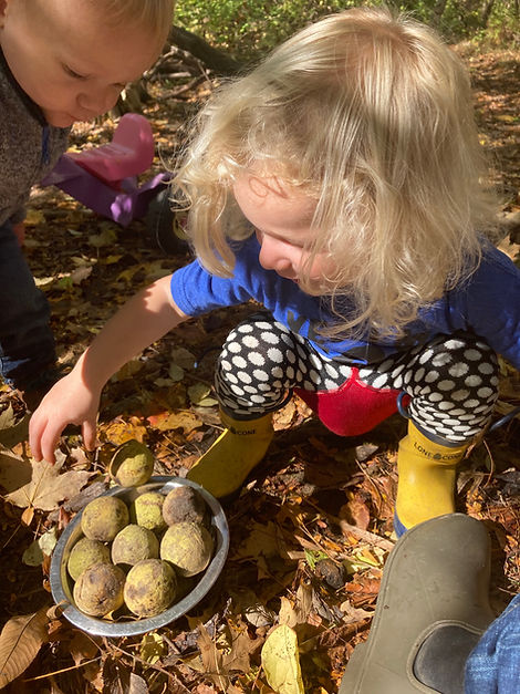 Toddlers & black walnuts.jpg