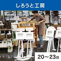 shop13.jpg