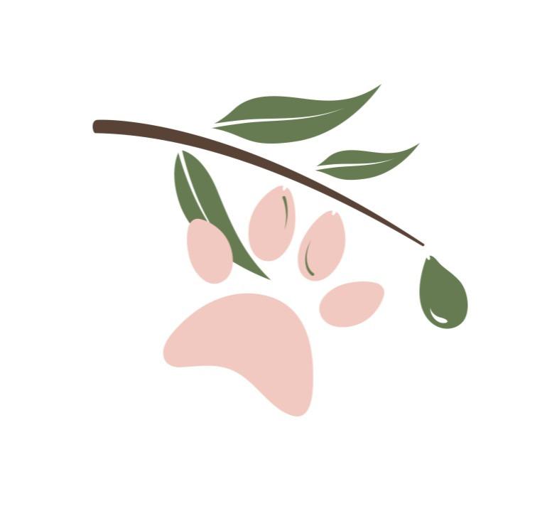 Olivenöl für Hunde - Hundepfote mit Oliven