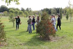 Tour of the Arboretum