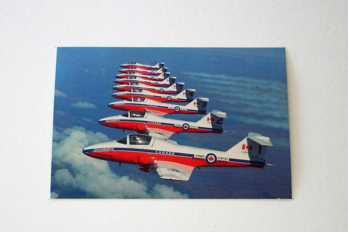 Snowbird Demonstration No.431 (25 postcards)