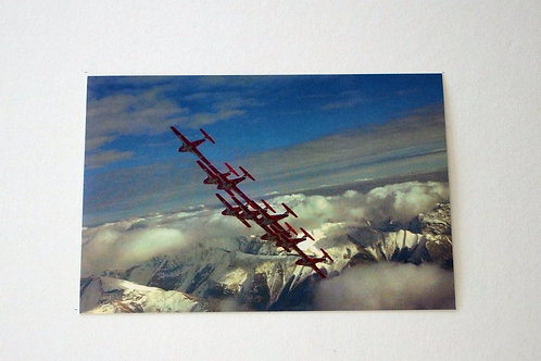 Snowbird Demonstration (25 postcards)