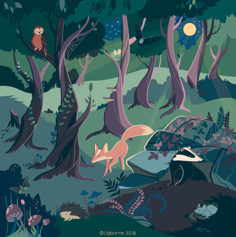 Nature activity book