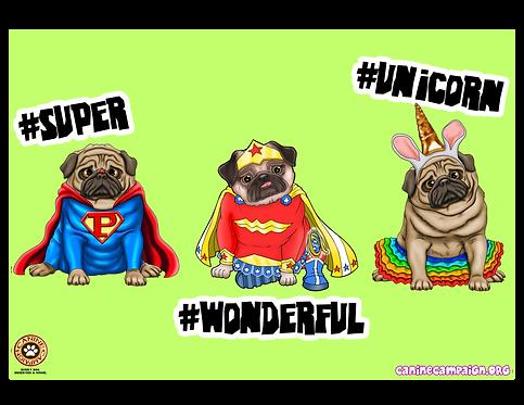 #Super #Wonderful #Unicorn