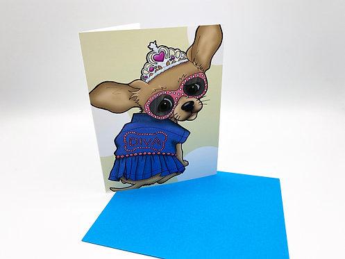 Diva Chihuahua