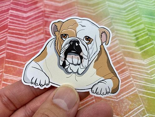 Bulldog (Die Cut Sticker)