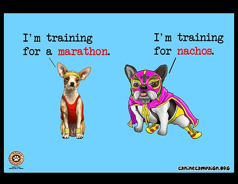 Marathon & Nachos