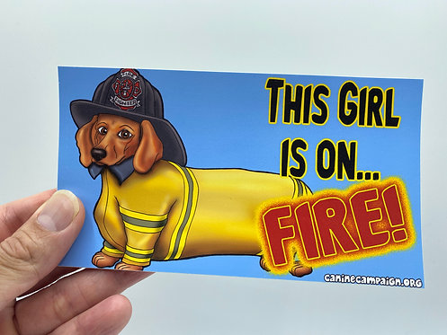Girl On Fire (Bumper Sticker)
