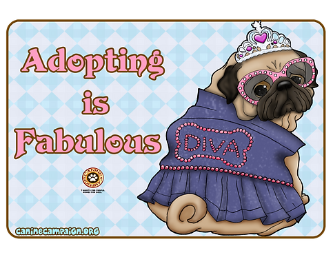 Adopting is Fabulous - Pug