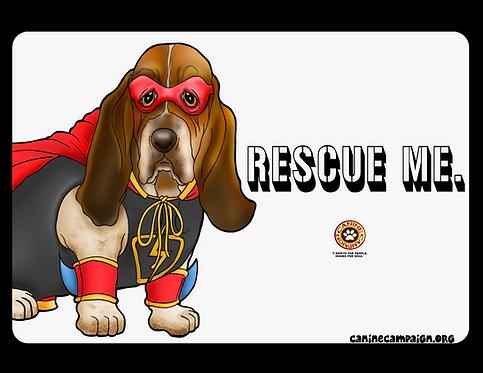 Rescue Me - Basset Hound