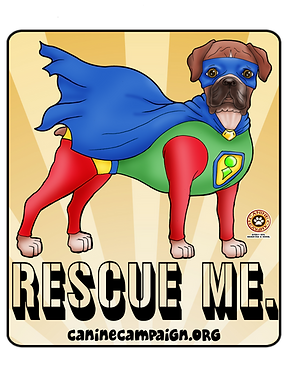 Rescue Me - Boxer