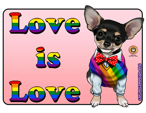 Love is Love - Chihuahua
