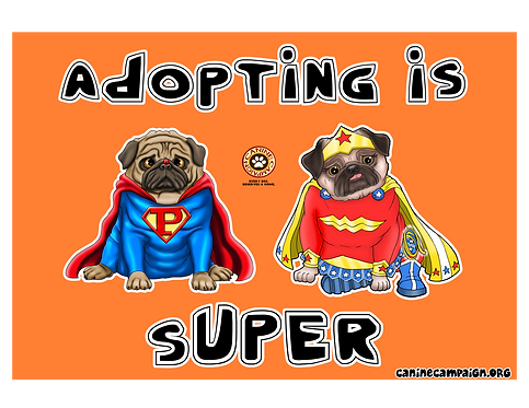 Adopting is Super