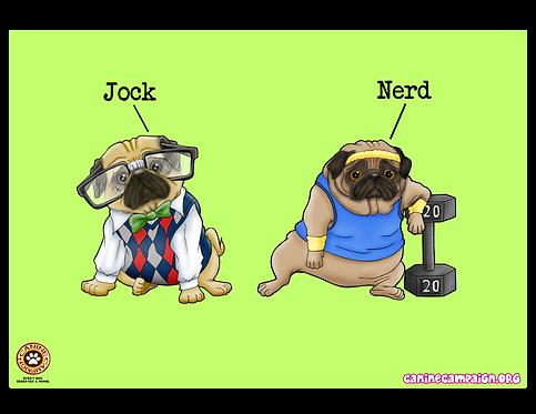 Jock & Nerd