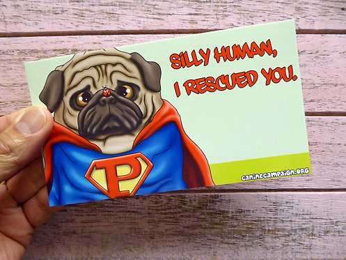 I Rescued You - Superman (Bumper Sticker)