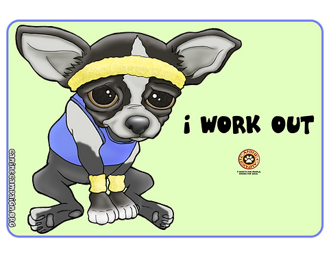 I Work Out - Chihuahua