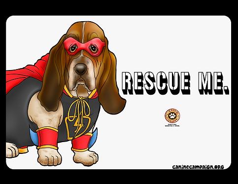 Basset Hound - Rescue Me