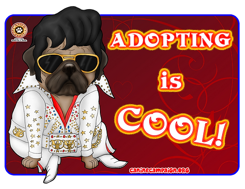 copy of Adopting is Cool (Elvis) - Pug