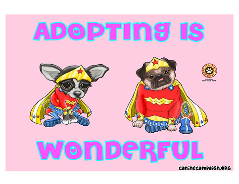 Adopting is Wonderful