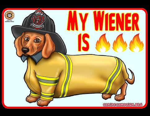 My Wiener is Fire