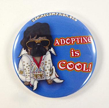 Adopting is Cool