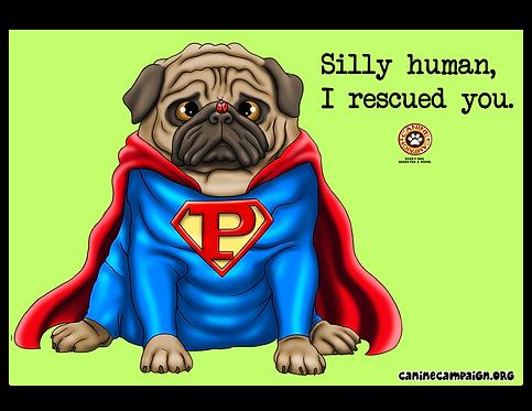 I Rescued You (Superman)