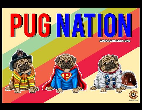 Pug Nation