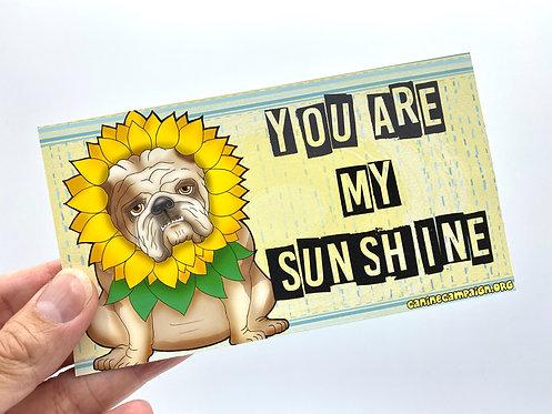 My Sunshine (Bumper Sticker)