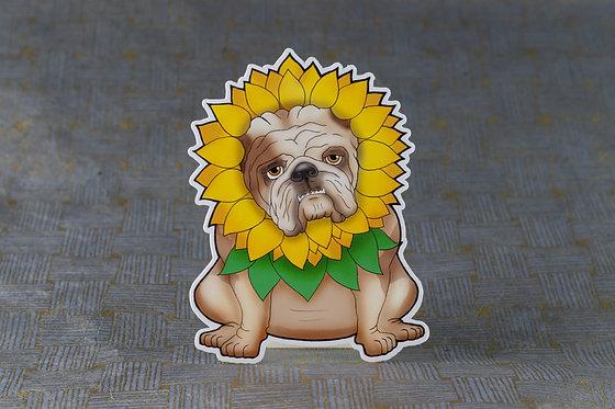 Sunflower Bulldog (Die Cut Sticker)