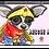 Thumbnail: Rescue Me (Chihuahua)