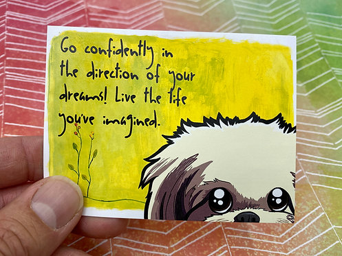Go Confidently...