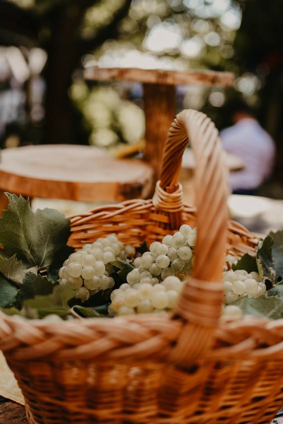 poročni fotograf I DJfotografija
