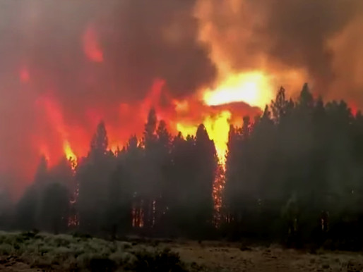 Massive Wildfires Continue to Grow on West Coast Threatening Thousands of Homes