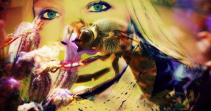 Amazing Honeybee