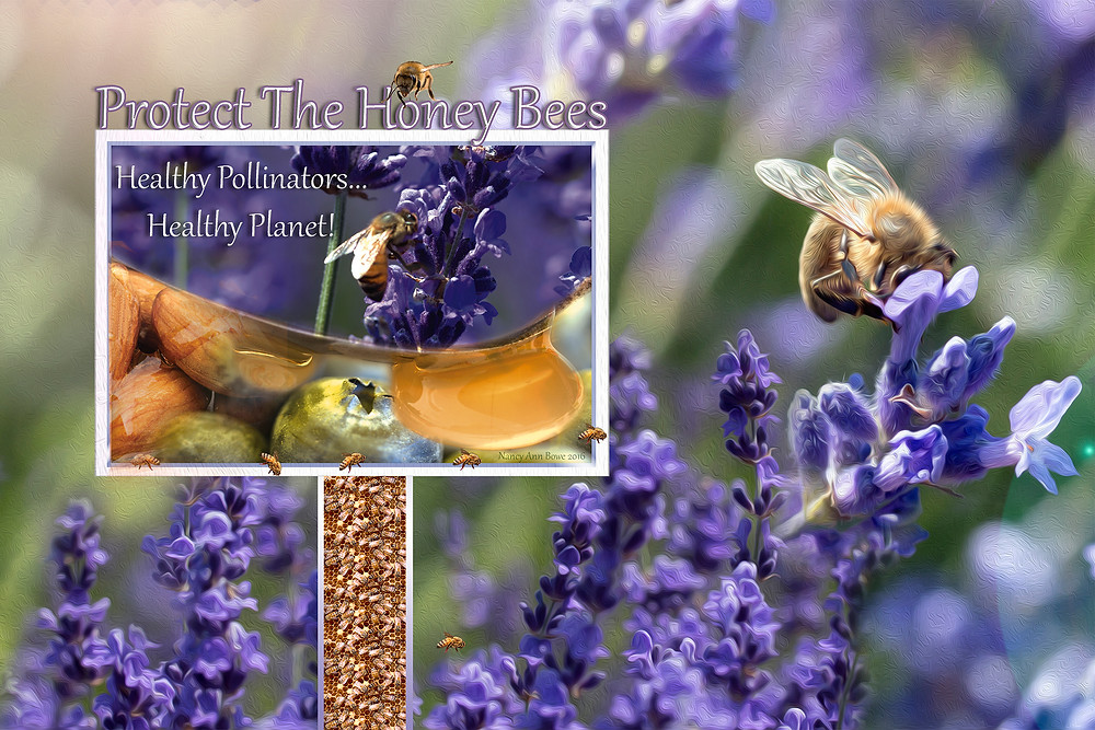 Plant bee loving plants in your yard.