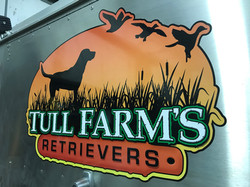 Tull Farm's Retrievers
