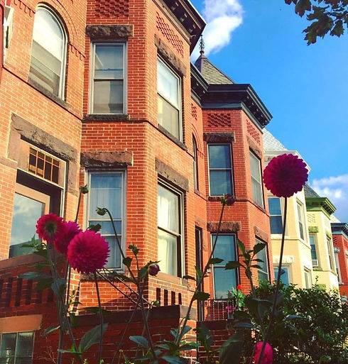 wandering_dc-rowhouses-in-columbia-heigh
