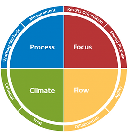 Insights personprofil farver og fokus