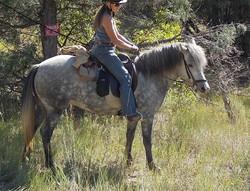 Elja started on the trail