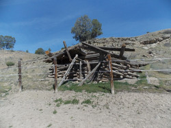 Old Rootcellar on ranch