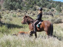 Eclipse & Ladina riding