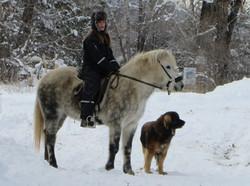 Hára in wintercoat