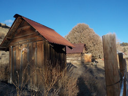 Old outhouse and old house in back