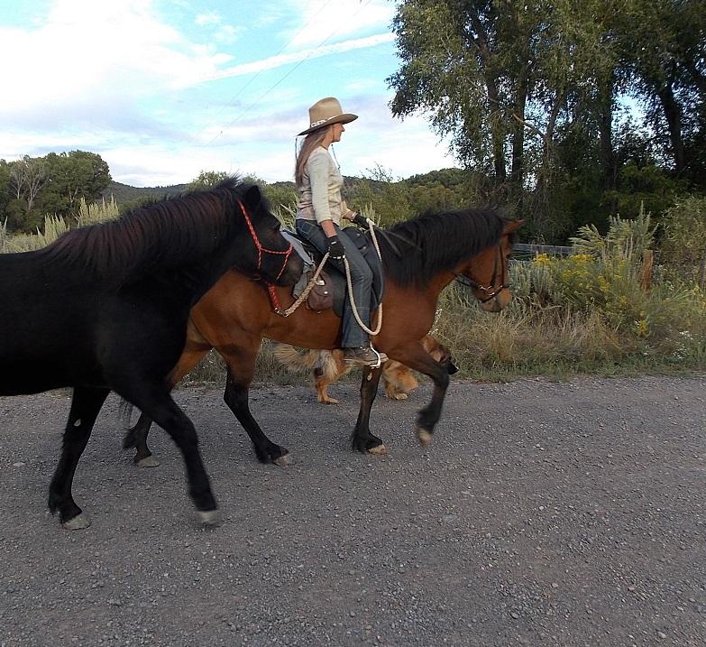 Elding ponying other horses