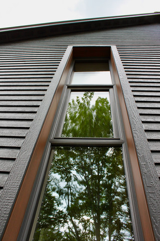 Tree-viewing window