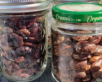 Seeds in two glass jars