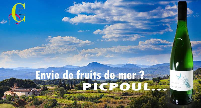 campaucels-printemps_0092panow.jpg