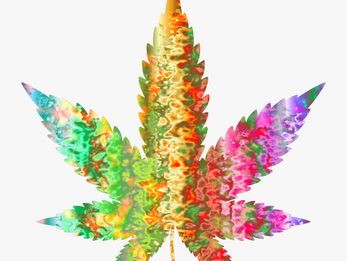 Reefer Madness Debunked