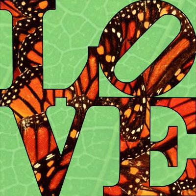 Monarch - LOVE380